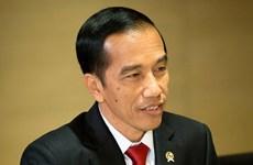 Indonesia y Timor Leste robustecen cooperación