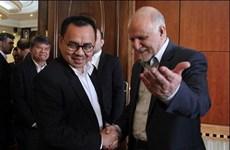 Impulsan Indonesia e Irán cooperación energética