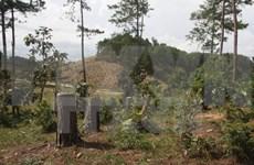 Revisan aplicación del sistema informativo de gestión forestal