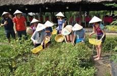 Ciudad vietnamita promueve agroturismo
