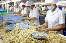 Vietnam registra superávit comercial de 685 millones de dólares