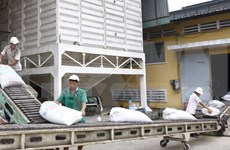Vietnam capta mil 330 millones de dólares de IED en enero