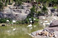 Un día en parque zoológico Vinpearl Safari Phu Quoc