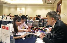 Comercio Vietnam-Turquía alcanzará tres mil millones USD este año