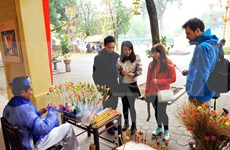 Disfrutan de atmosfera de Tet en Museo de Hanoi
