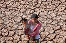 Vietnam lucha contra la sequía más severa de su historia