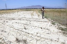 """Cambio climático: Provincia vietnamita declara la situación de """"catastrófica"""""""