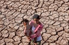 Otras diez provincias vietnamitas se declaran en situación de catastrófica
