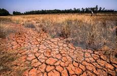 Sequía y salinización seguirán afectando a Vietnam en abril