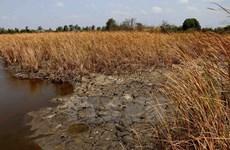 Nivel de salinización en ríos en el sur aumentará, según pronósticos