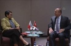 Indonesia y Turquía potencian cooperación económica y lucha antiterrorista