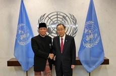 Indonesia promueve su papel en las Naciones Unidas