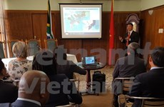 Vietnam y Sudáfrica buscan aumentar comercio mediante transporte marítimo