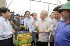 Líder partidista exhorta a Ha Tinh a concentrarse en el desarrollo sostenible