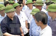 Vicepremier exige detectar causas de muerte masiva de peces en Ha Tinh