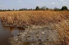 Región central de Vietnam sigue en lucha contra sequía
