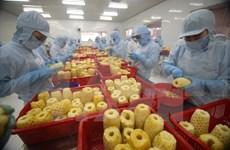 Vietnam por promover integración económica y desarrollo del sector agrícola
