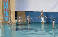 Presentarán por primera vez en Egipto arte de títeres acuáticos de Vietnam