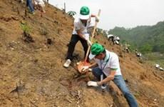 Honda – Vietnam siembra 80 hectáreas de bosque en Bac Kan