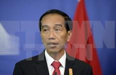 Indonesia y Sudcorea robustecen cooperación multifacética