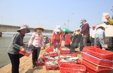 Declaración de Rupert Colville sobre DD.HH. en Vietnam: subjetiva y errónea