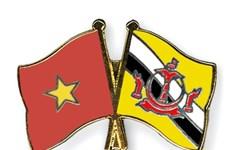 Vietnam y Brunei amplían nexos en defensa