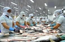 Otros 12 exportadores vietnamitas de bagres obtienen acceso a Estados Unidos