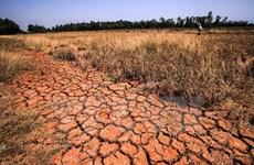 Comisión Europea asiste a pobladores afectados por sequía en Vietnam