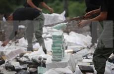 Camboya y Myanmar destruyen gran cantidad de drogas
