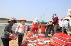 Quang Tri dedica esfuerzos por estabilizar la vida de pescadores locales