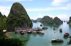 Jóvenes vietnamitas residentes en ultramar exploran Bahía de Ha Long