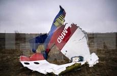 Malasia se compromete a averiguar explicación para la tragedia MH17