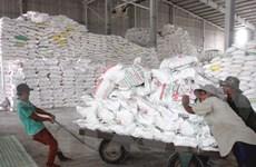 Vietnam destaca importancia de mercado filipino para exportación arrocera