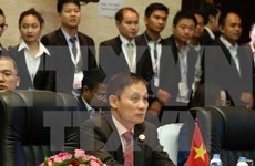 Vicecanciller: Vietnam contribuyó activamente a formación de Comunidad de ASEAN
