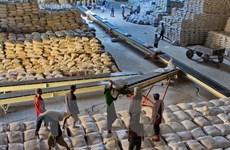 Las exportaciones del arroz de Vietnam merman 18,4 por ciento