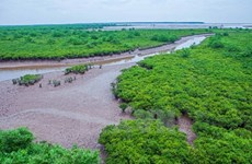 Unión Europea respalda a Vietnam en el desarrollo de turismo sostenible