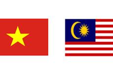Recibe viceministro vietnamita de defensa a comandante de fuerza aérea malasia