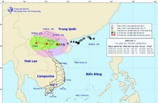 Bac Giang preparada para enfrentar al tifón Dianmu