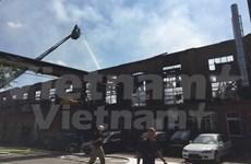 Vietnamitas en Alemania sufren pérdidas económicas por incendio