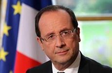 Opinión pública sobre la visita del presidente François Hollande a Vietnam