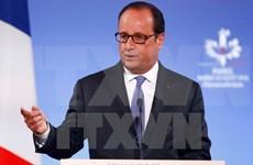 Visita de Francois Hollande promoverá la asociación estratégica Francia- Vietnam