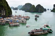 Vietnam posee ventajas para atraer a turistas de Australia y Nueva Zelanda