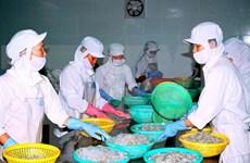 TLC Vietnam-UE: Listo para nuevas oportunidades