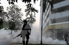 Singapur confirma 16 embarazadas infectadas por Zika