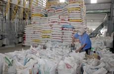 Filipinas aumentará importación del arroz de Vietnam