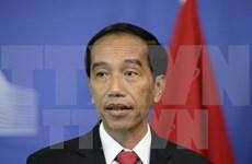 Indonesia llama a esfuerzos globales contra pesca ilegal