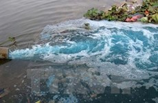 Ciudad Ho Chi Minh aspira a aprender experiencias de Japón en protección ambiental