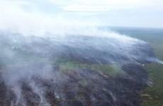 Incendio de turberas en Indonesia