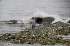 Tifón Sarika provoca pérdidas humanas y materiales en Filipinas