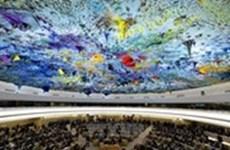 Vietnam y Suiza efectúan diálogo de derechos humanos